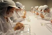 食品加工与检验专业